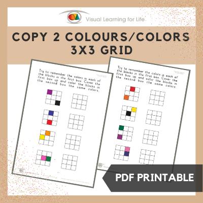 Copy 2 Colours/Colors 3x3 Grid