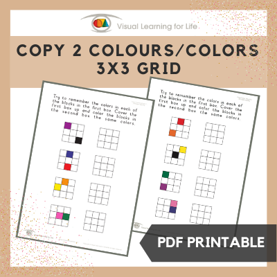 Copy 2 Colours/Colors 3x3 Grid