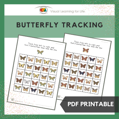 Butterfly Tracking