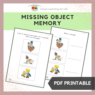 Missing Object Memory