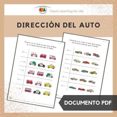 Dirección del Auto