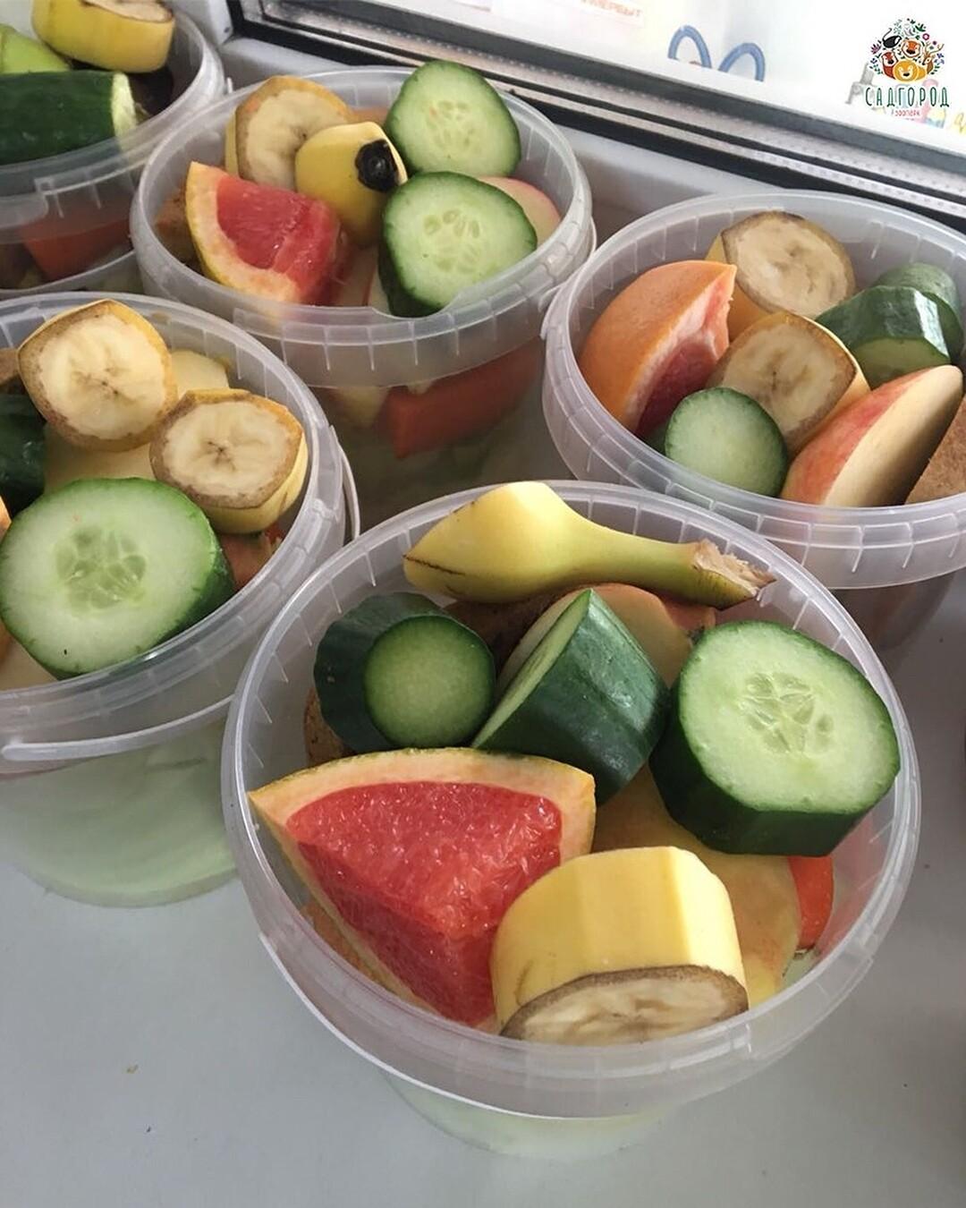 Ведёрко с кормом (овощи, фрукты)