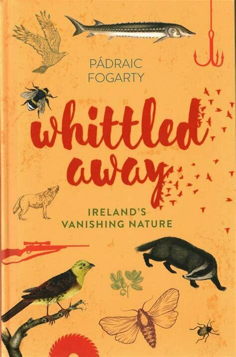 Whittled Away: Ireland's vanishing nature