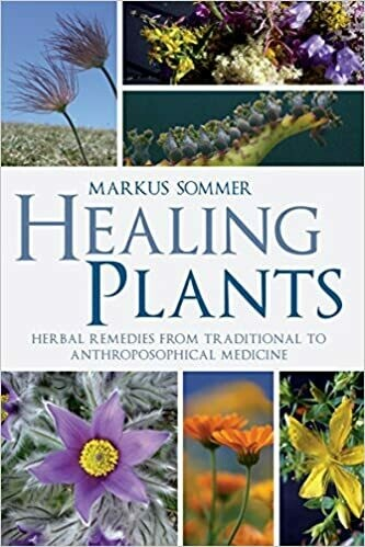 Healing Plants: herbal remedies from traditional to Anthoposophical medicine