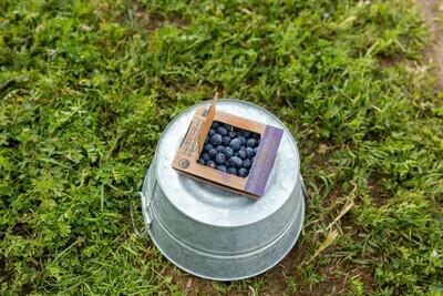 Blueberries Organic 6oz