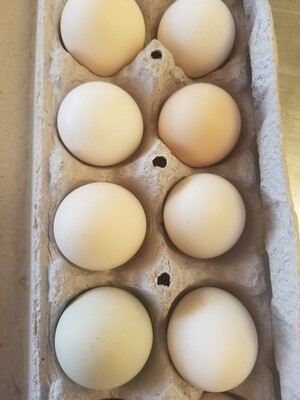 Eggs Large LooseRoosterRanch/KiteHawkFarms 1 Dz
