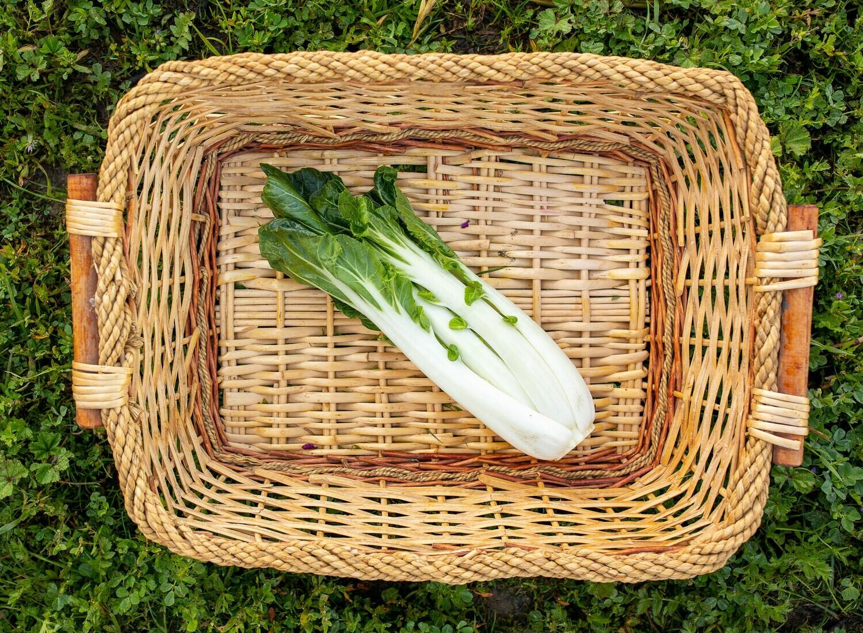 Bok Choy Organic/each