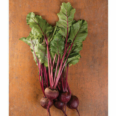 Beets Red bunched Organic