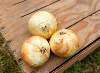 Onions Yellow Organic/lb