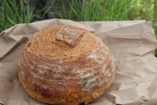 Mark Mena Bread Sourdough 1.5 lb