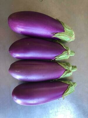 Eggplant Dancer/lb