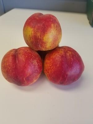 Nectarine 1lb