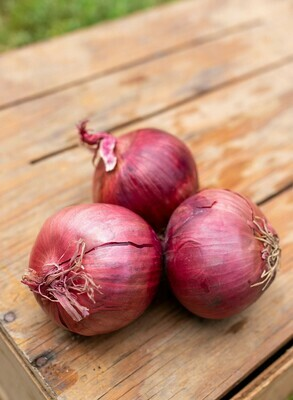 Onions Red medium Organic/lb