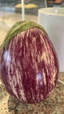 Eggplant (Indian) Calliope/lb