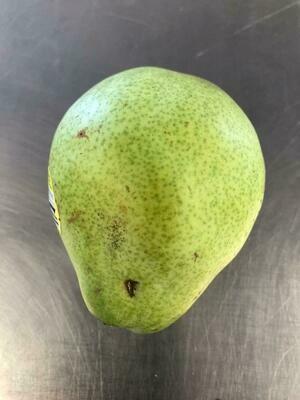 Pears D'Anjou Organic/lb