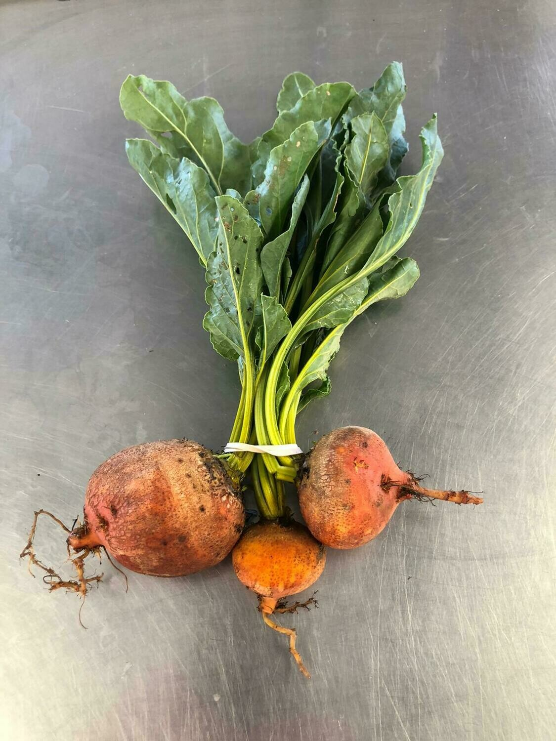 Beets Gold Bunched Organic