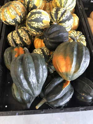 Squash Winter Acorn Organic/lb
