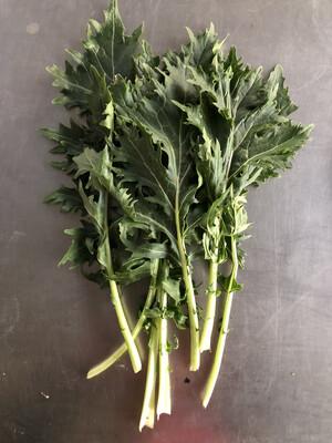 Greens Mizuna (Japanese Mustard)/bunch