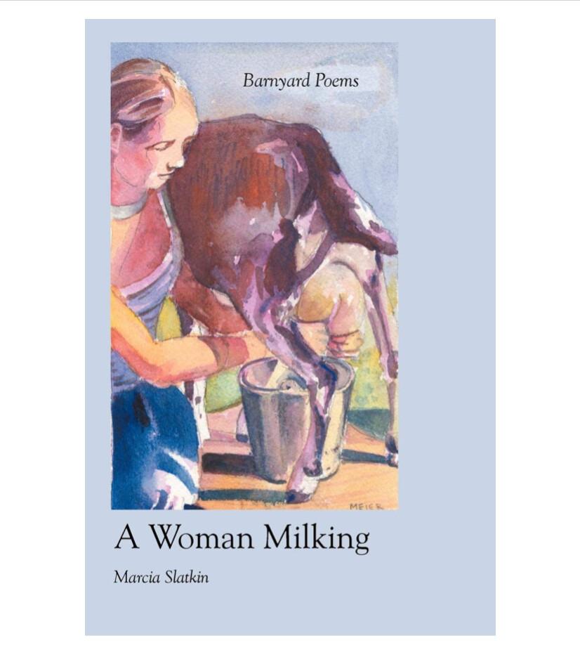 A Woman Milking - B6493