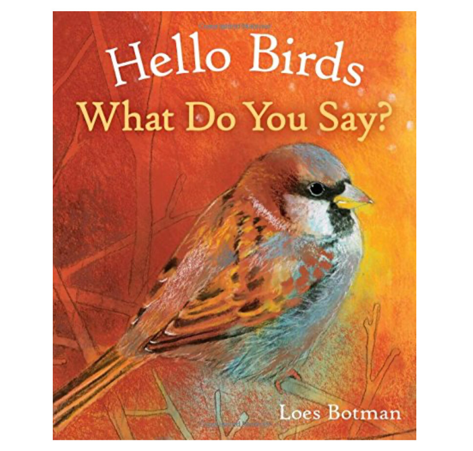 B4887 Hello Birds What Do You Say?