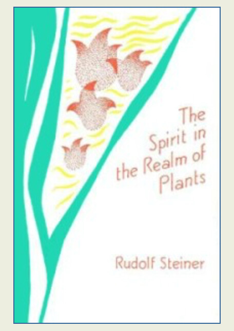 The Spirit in the Realm of Plants B2082