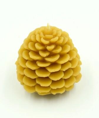 Pinecone medium 3158