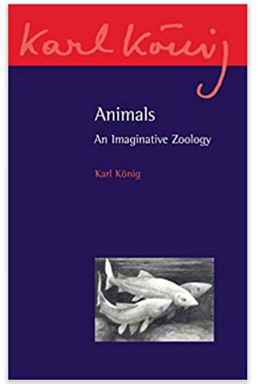 Animals B9664