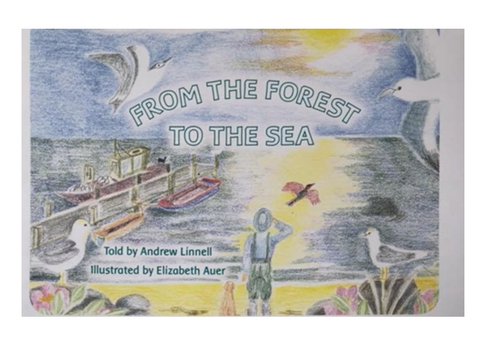 From the Forest to the Sea B6255