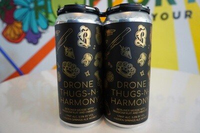 Hidden Springs Ale Works - Drone Thugs-N-Harmony - Sour - 5.5% ABV - 4-Pack
