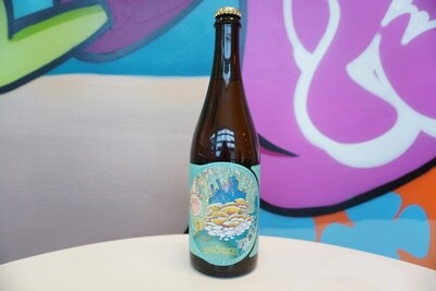 Jester King - Snorkel - 4.5% Farmhouse - 750ml Bottle