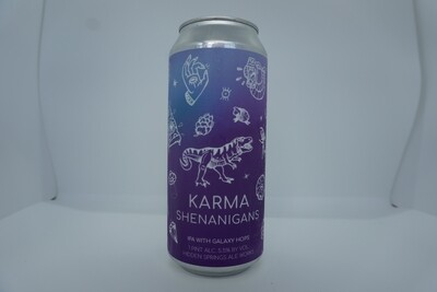 Hidden Springs Ale Works - Karma Shenanigans - IPA  - 5.5% ABV - 16oz Can
