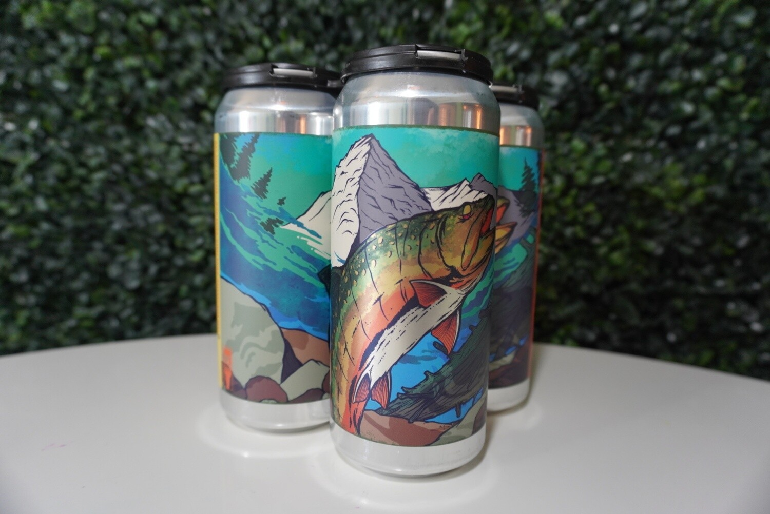 Tripping Animals - Always With Flow - DIPA - 8.5% ABV - 4 Pack