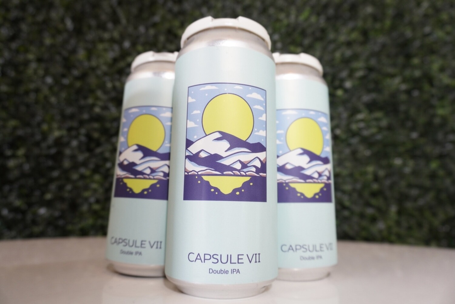 Hudson Valley - Capsule VII - Double IPA - 8% ABV - 4 Pack