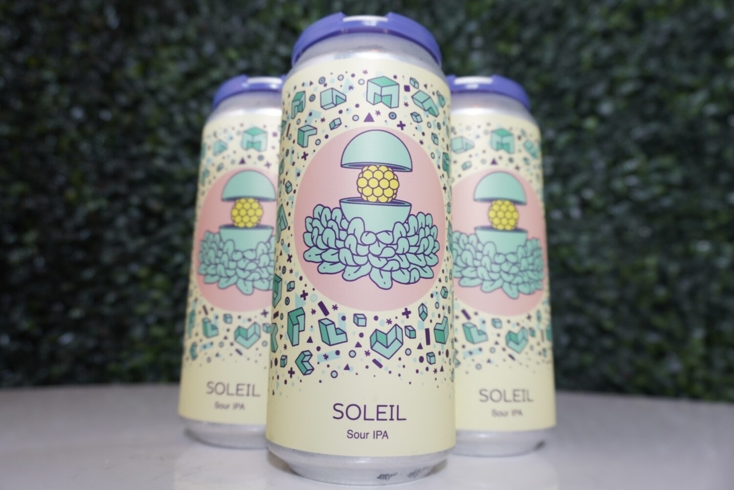 Hudson Valley - Soleil - Sour IPA - 6% ABV - 16oz Can