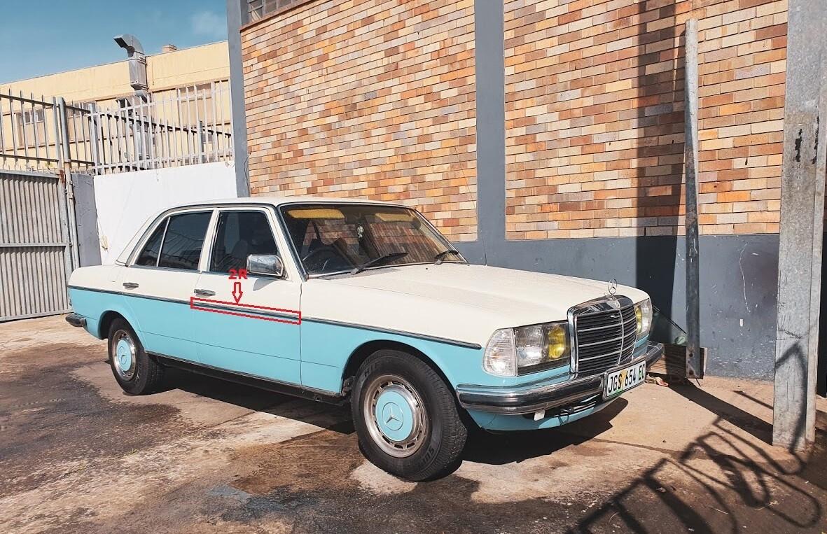 Mercedes-Benz Right Front Door Beading (W123)