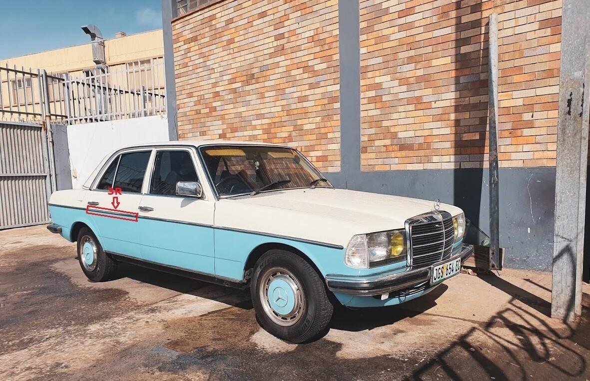Mercedes-Benz Right Rear Door Beading (W123)