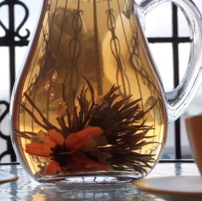 TE PREPARADO         (Brewed Tea)  CAMELIA SINENSIS