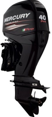 F 40 ELPT EFI Mercury / Mariner Outboard ~ ALL Models ~ Click to show pricing