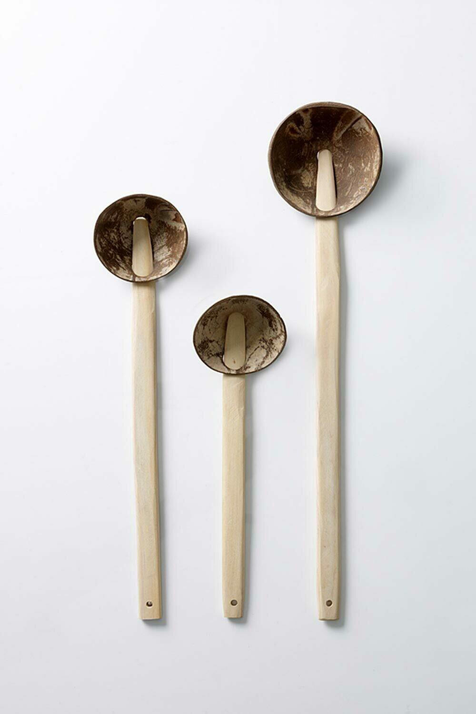 Coconut Spoon Set
