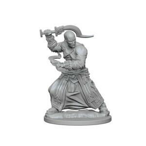 Pathfinder Nolzur's Marvelous Miniatures - Human Male Monk (2 Miniature)