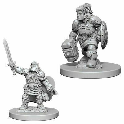 D&D Nolzur's Marvelous Miniatures - Dwarf Female Paladin (2 Miniature)