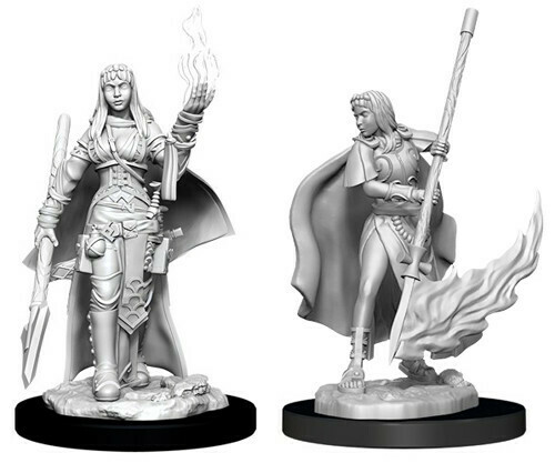 Pathfinder Miniatures - Female Human Oracle (Magic User) (2 Miniature)