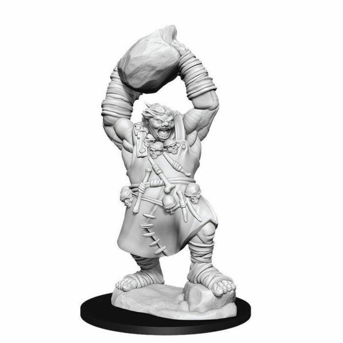 Pathfinder Miniatures - Ogre