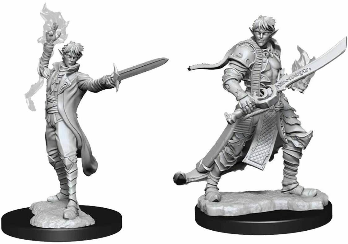 Pathfinder Miniatures - Male Elf Magus (Magic User) (2 Miniature)