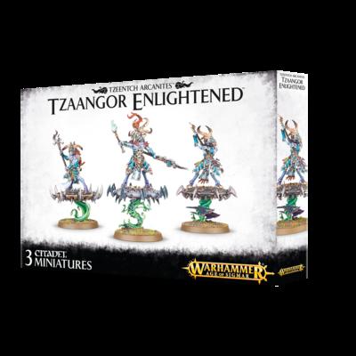 Warhammer Age of Sigmar: Tzeentch Arcanites Tzaangor Enlightened