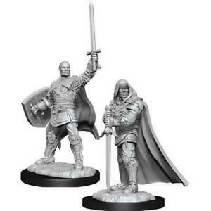 Nolzur's Marvelous Miniatures - Human Male Paladin 3 (2 Miniature)