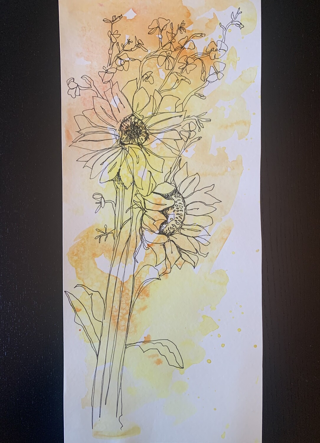 Sunflower sketch over watercolor