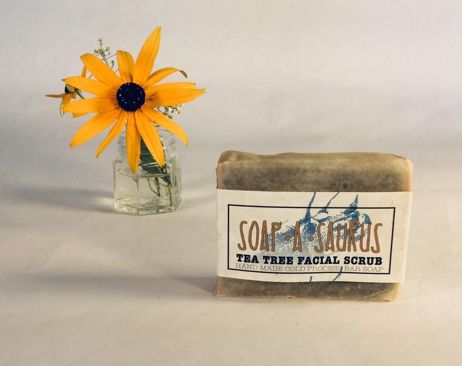 soap, bar, all-natural, handmade, Tea Tree Facial Scrub; Soap-A-Saurus; each
