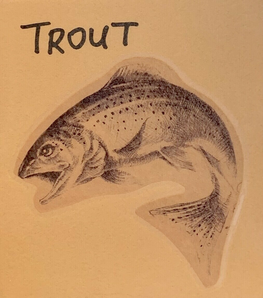 trout, head & tail, boneless; each; VA Trout Co