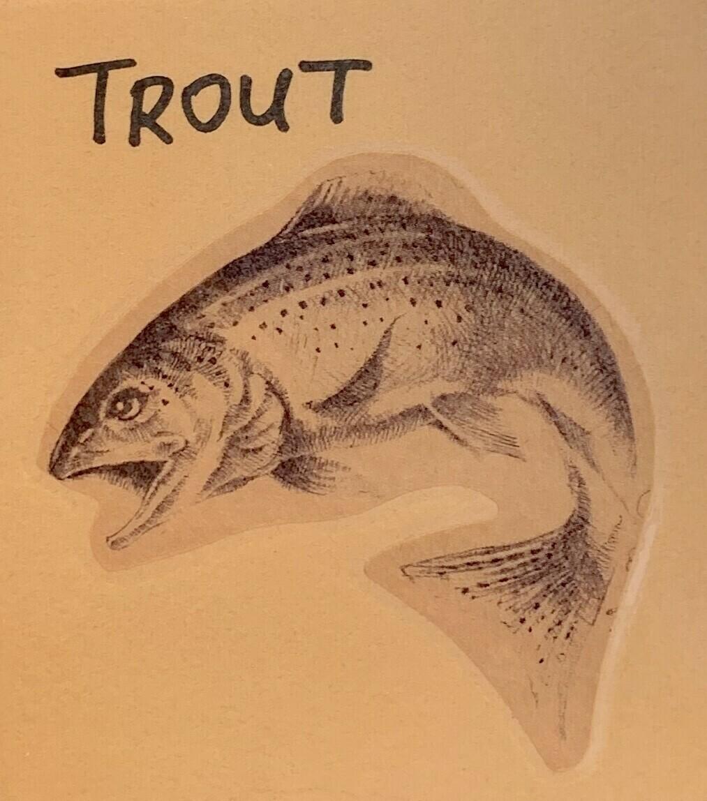 trout, filet; per pack; VA Trout Co.